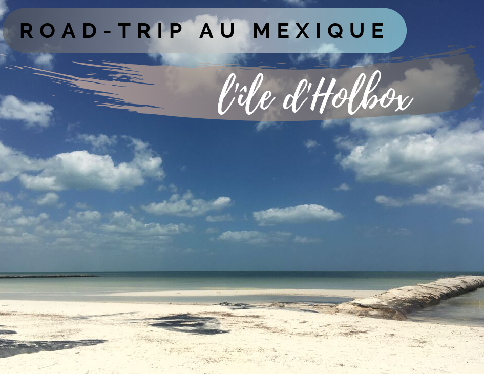 Illustration de l'article holbox mexique