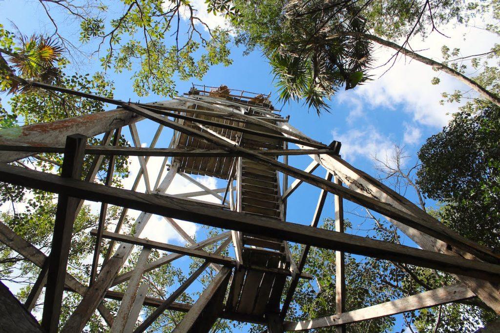 Au pied du mirador dans la réserve de Sian Ka'an
