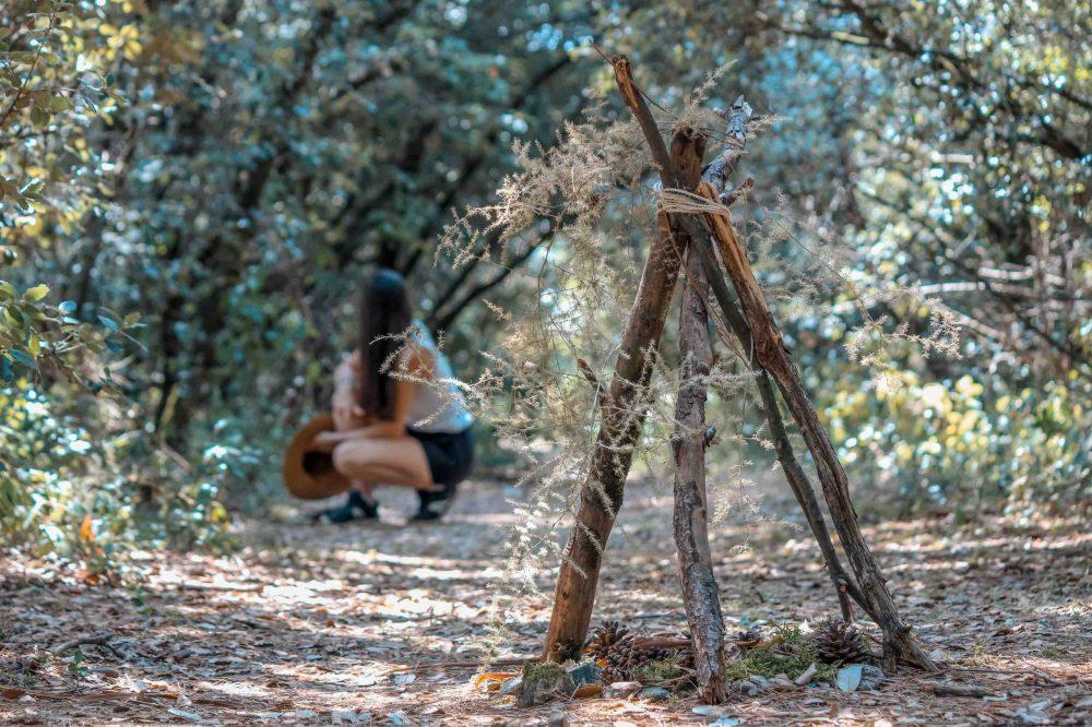 Une construction en branchage dans la forêt